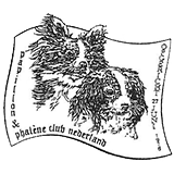 Papillon en Phalène club Nederland